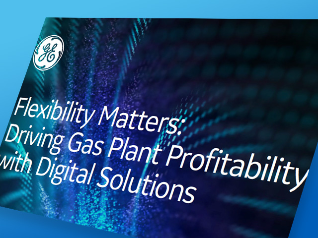 Flexibility Matters: Driving Gas Plant Profitability with Digital Solutions
