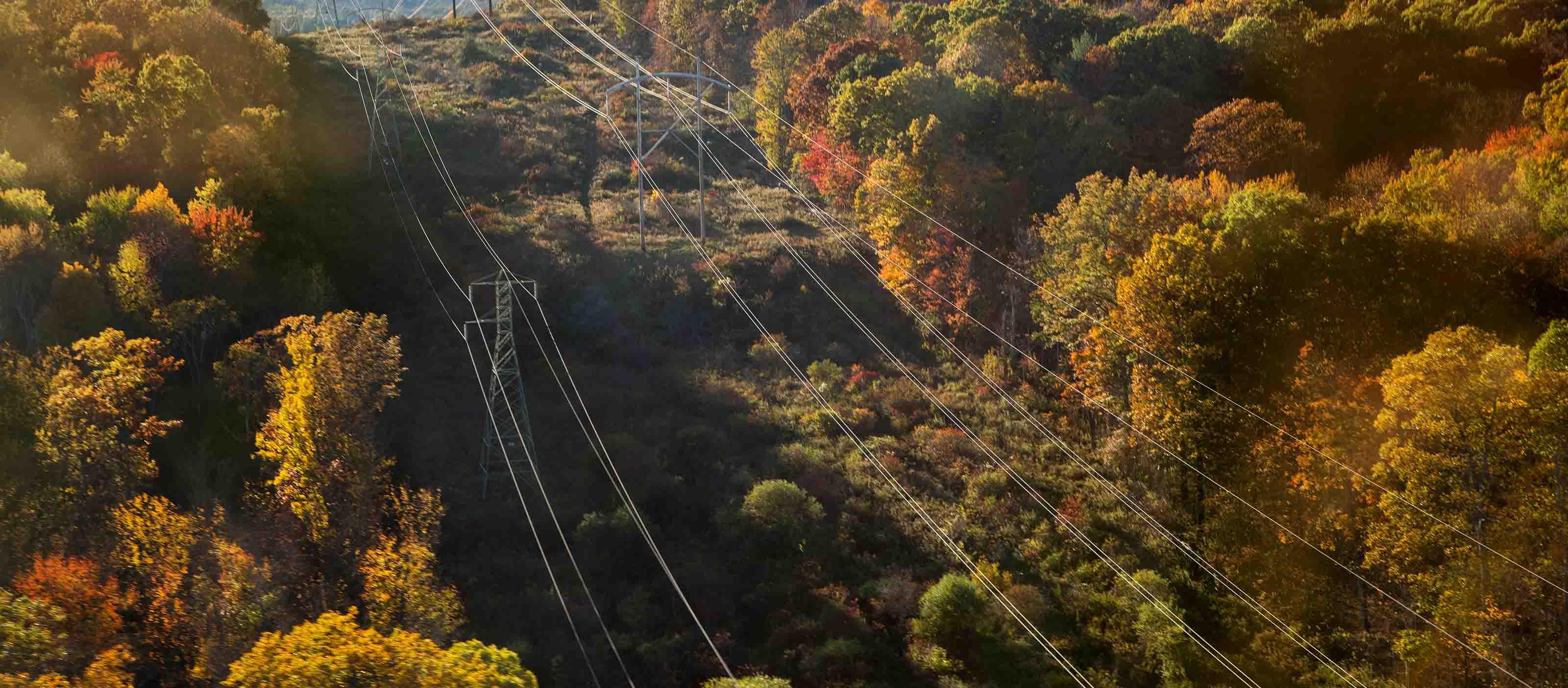 Visual Intelligence for vegetation management for utilities | GE Digital