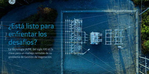 Mitigating threats and strengthening the Grid with AI-based vegetation & asset inspection programs
