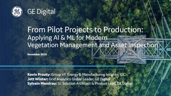 Applying AI and ML for modern vegetation management and asset inspection