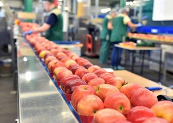 GE Digital MES software assists major food and beverage manufacturers
