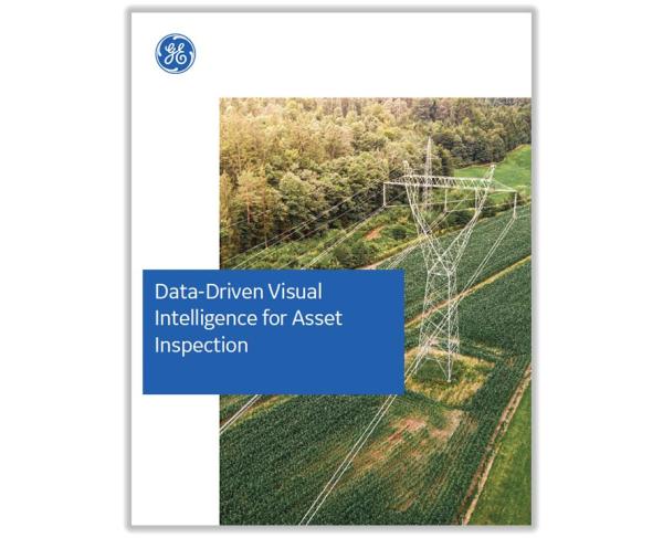 Data-driven visual intelligence drives down vegetation management costs | GE Digital