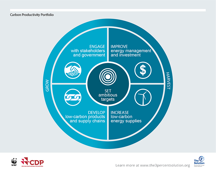 The Carbon Productivity Portfolio is a set of five practical actions, built on the experiences of leading companies. The five steps maximize carbon reduction and simultaneously create business value.